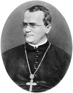 Gregor Mendel, father of genetics, lover of peas.